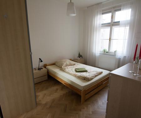 Zimmer zu vermieten - Prag 3 - Zizkov