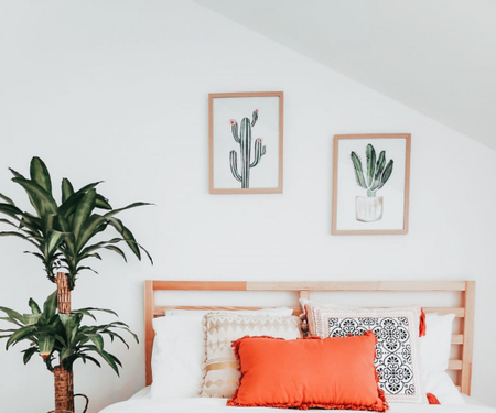 Rooms for rent  - Porto